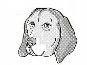 Retro Cartoon Style Drawing Of Head Of An American English Coonhound  , A Domestic Dog Or Canine Bre poster