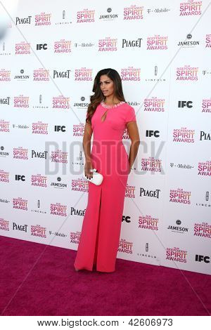 LOS ANGELES - FEB 23:  Camila Alves attends the 2013 Film Independent Spirit Awards at the Tent on the Beach on February 23, 2013 in Santa Monica, CA
