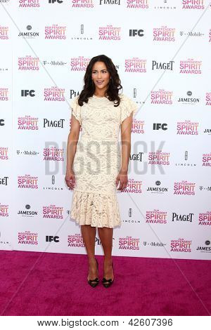 LOS ANGELES - FEB 23:  Paula Patton attends the 2013 Film Independent Spirit Awards at the Tent on the Beach on February 23, 2013 in Santa Monica, CA