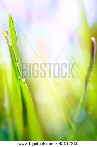 Art Green Spring Abstract Light Background