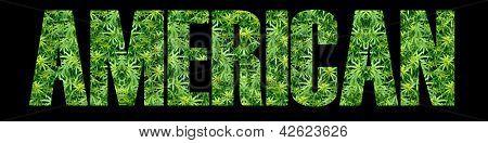 Marijuana American
