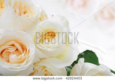 White Roses With Yellow Centers