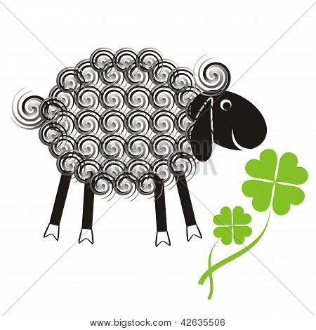 Little Cute Sheep