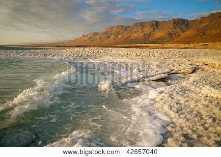 Dead Sea coastline. Israel