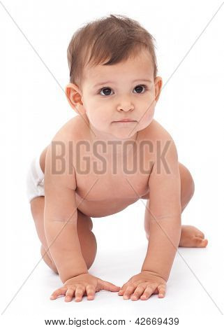11 monthes baby isolated on a white background.