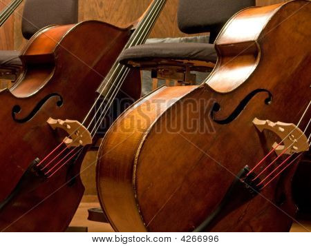Two Contra Basses
