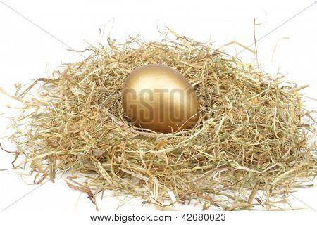 Golden egg in straw