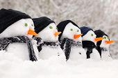 image of huddle  - Snowmen close up in a row with hats and scarfs - JPG