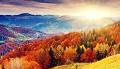 stock photo of cloud forest  - the mountain autumn landscape with colorful forest - JPG