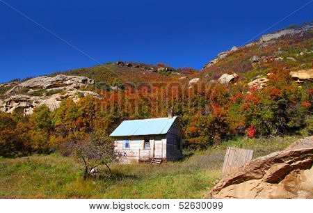 Abandoned home in Gunnison national forest
