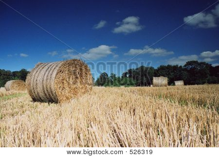 Hay Bales In Summer