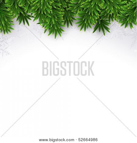 Christmas background with fir and snowflakes. Vector illustration.