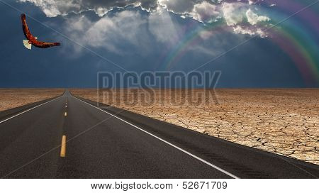 Road leads into desert