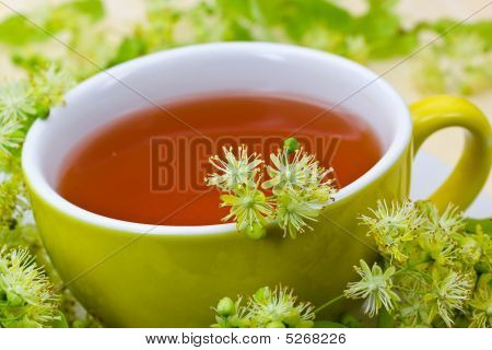 Fresh Tea Of Lime Blossom - Tilia Platyphyllos