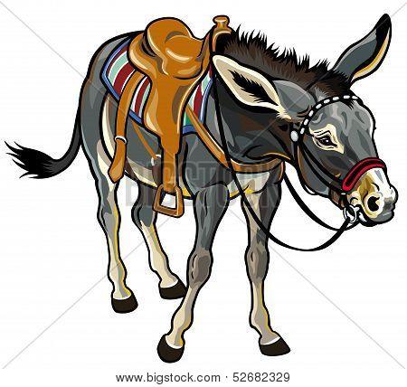 Donkey With Saddle