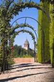 stock photo of garden eden  - Generalife gardens in Granada - JPG