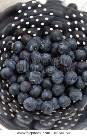 Delicious Fresh Blueberries