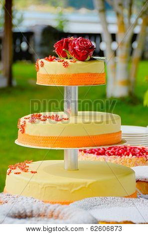 Wedding cake in a park