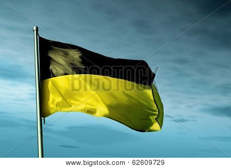 Germany Baden-wuerttemberg Flag Waving On The Wind