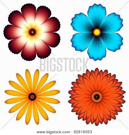 different flower set