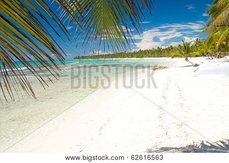 Caribbean Sea With White Sand On Island Saona