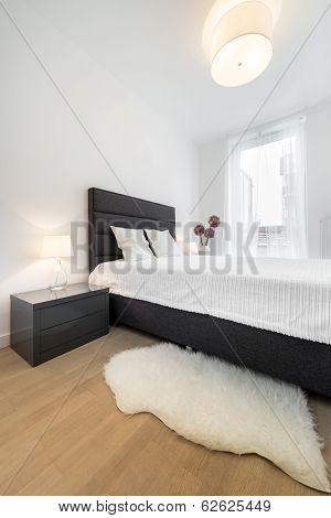 Elegant And Modern Bedroom