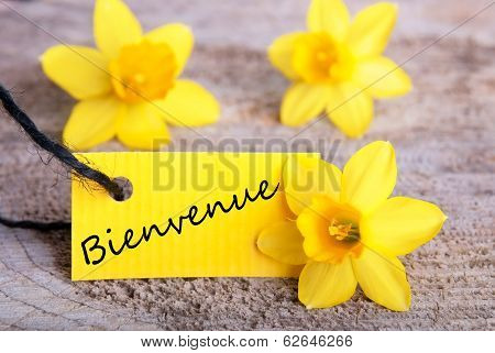 Tag With Bienvenue