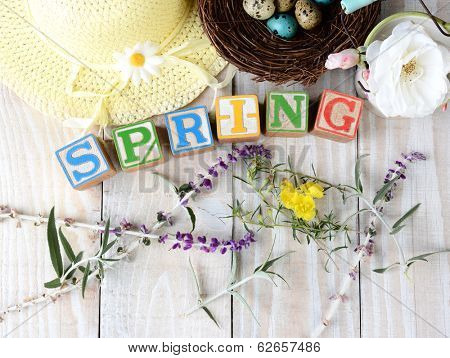 Childrens blocks spelling out Spring on rustic wooden boards The word is surrounded by flowers, a bonnet and a birds nest with eggs. Horizontal format.