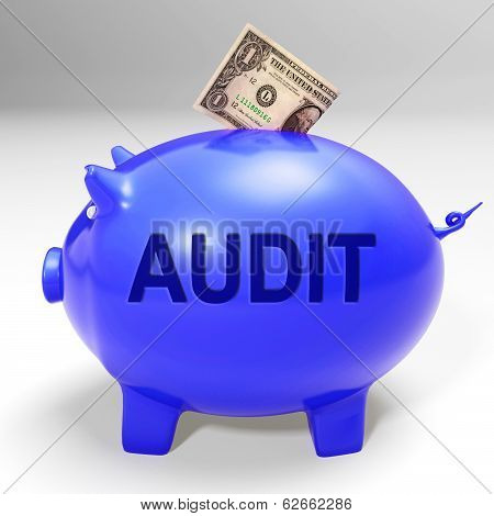 Audit Piggy Bank Means Auditing Inspecting And Finances