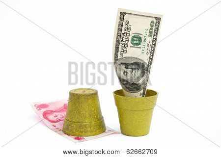 Blooming Usd And Rotten Rmb With Clipping Path