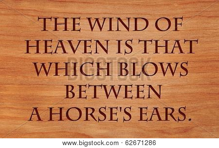 The wind of heaven is that which blows between a horse's ears - Arabian Proverb on wooden red oak background
