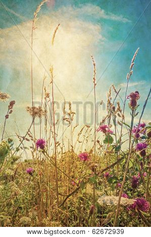 Retro beautiful view in summer flower (Forest of Flowers )