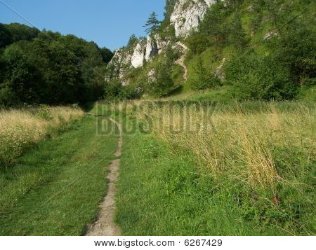 path in the valley