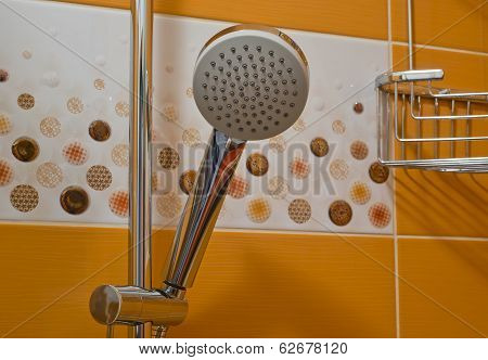 Shower Head And Decorative Tiles
