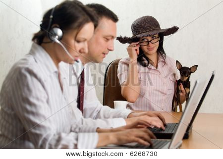 A Glamour Lady With A Hat, Spectacles And A Dog At The Office Desk