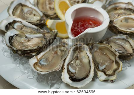 A Platter Of Fresh Organic Raw Oysters On Ice
