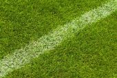 pic of football field  - white lateral line of a football field on a green lawn - JPG