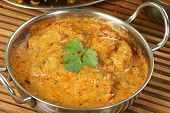 stock photo of curry chicken  - delicious chicken pasanda curry wit coriander garnish - JPG