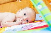 stock photo of finger-licking  - little baby with finger in mouth on the playing mat - JPG