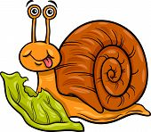 Snail And Lettuce Cartoon Illustration