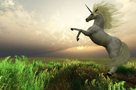 stock photo of bucking bronco  - The fabled Unicorn Stag rears up in the afternoon sunset - JPG