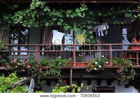 Garden Balcony In Bulgaria