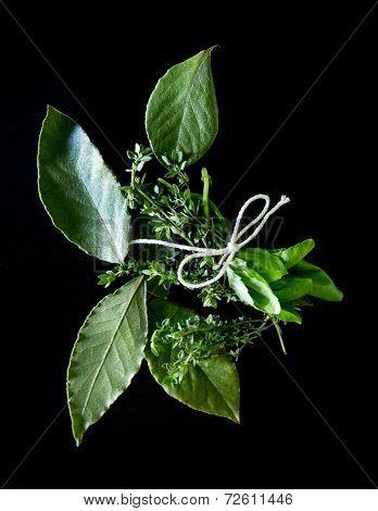 Fresh Herb Bundle