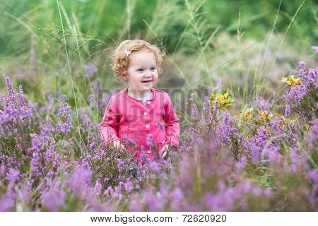 Beautiful Little Baby Girl Walking In Purple Autumn Flowers In A Heath Landscape