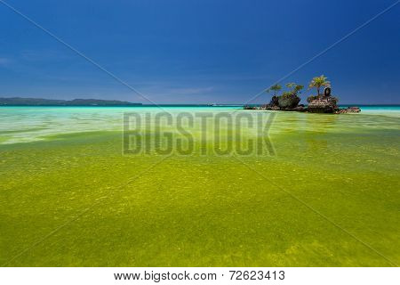 Willy's Rock In Green Seaweed. Boracay, Philippines