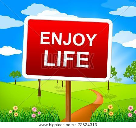 Enjoy Life Indicates Jubilant Fun And Happiness