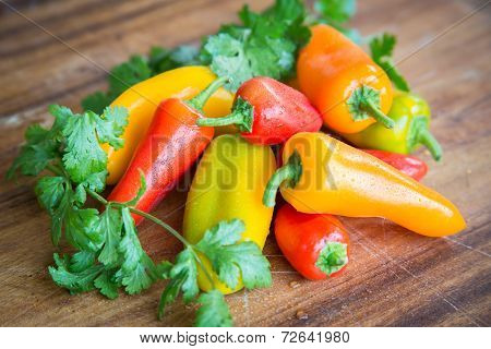 Peppers and Cilantro