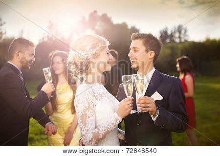 Newlyweds and wedding guests clinking glasses
