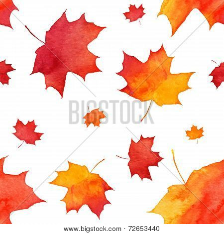 Watercolor painted red autumn maple leaves pattern