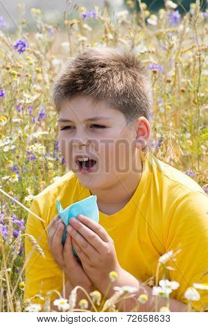 Boy with allergic rhinitis in  meadow